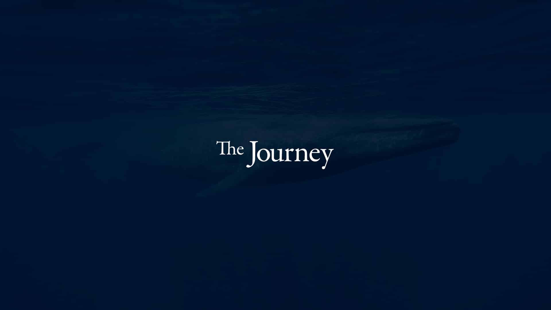 The Journey: the true story of the origin of Parvati.org