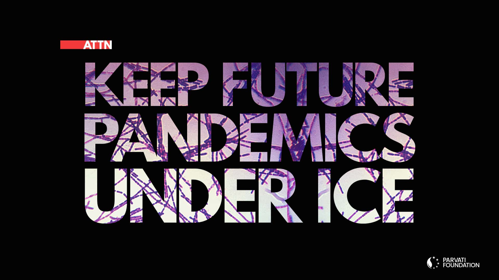 Parvati Foundation Responds to COVID-19 - Keep Future Pandemics Under Ice